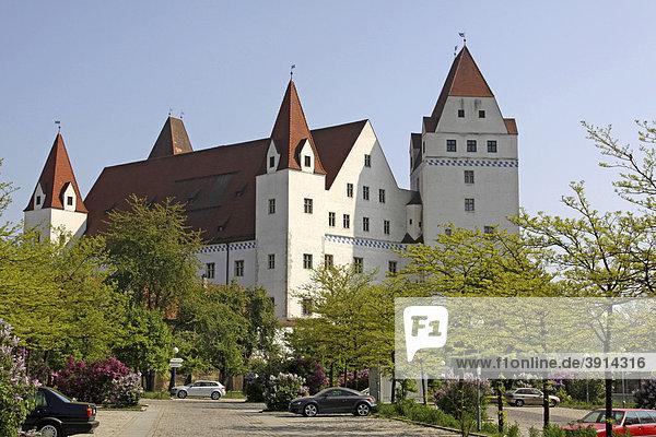 Neues Schloss  Residenz der Ingolstädter Herzöge  Ingolstadt  Bayern  Deutschland  Europa