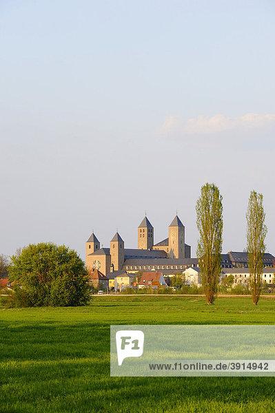 Kloster  Münster Schwarzach am Main  Unterfranken  Bayern  Deutschland  Europa