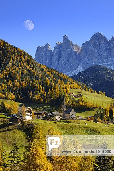 Kirche von St. Magdalena mit Geislergruppe  Villnösstal  Dolomiten  Südtirol  Italien  Europa