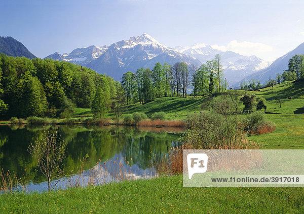Burgseeli bei Interlaken vor dem Berg Schynige  Berner Oberland  Kanton Bern  Schweiz  Europa Kanton Bern