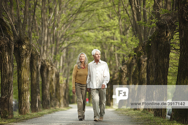 Seniorenpaar geht spazieren  Norditalien  Europa  Telve  Dolomiten