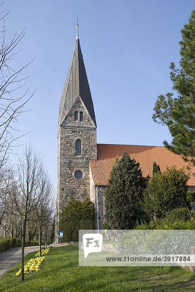 Romanische 800 Jahre alte Feldsteinkirche im Ortsteil Borby  Eckernförde  Schleswig-Holstein  Deutschland  Europa