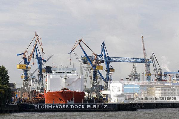 Schiff und Kräne im Dock an der Elbe  Hamburg  Deutschland  Europa