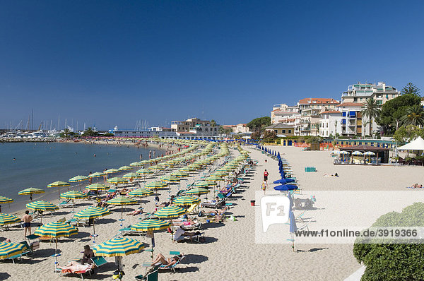 Parasols and deck chairs on the beach  San Remo  Riviera  Liguria  Italy  Europe
