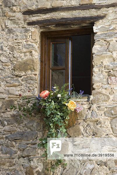Blumenschmuck am Fenster in der Altstadt  Bergdorf Apricale  Riviera  Ligurien  Italien  Europa