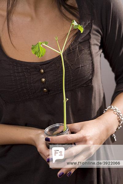 Frau hält eine eingetopfte Pflanze