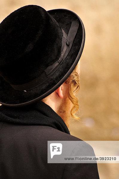 Orthodoxer Jude beim Gebet an der Klagemauer  Jerusalem  Israel  Naher Osten  Orient