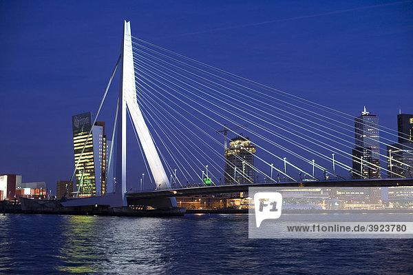 Erasmusbrug und Kop van Zuid an der Maas  Rotterdam  Südholland  Holland  Niederlande  Europa