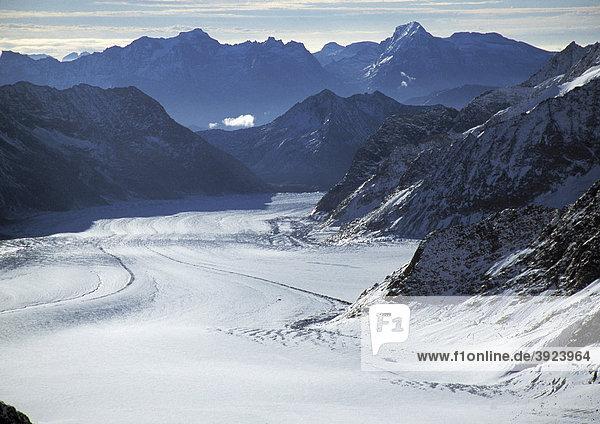 Aletschgletscher vom Jungfraujoch  Westalpen  Grindelwald  Schweiz  Europa