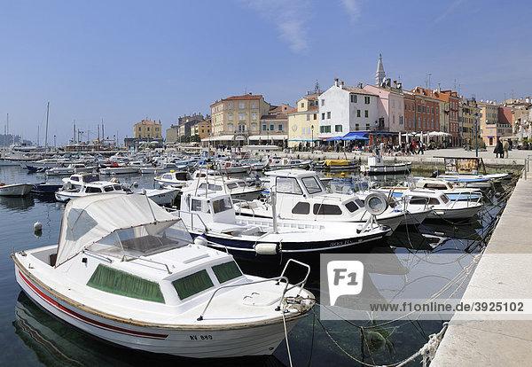 Hafen von Rovinj  Kroatien  Europa