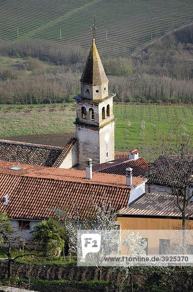 Blick über die Unterstadt von Motovun  Kroatien  Europa