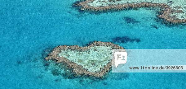 Luftaufnahme Meeresboden  Heart Reef  Riff in Herzform  Great Barrier Reef World Heritage Area  Großes Barriereriff  UNESCO Weltnaturerbe  Queensland  Südpazifik  Australien