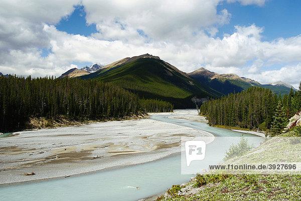 Ein Gletscherfluss in den Rocky Mountains  Banff Nationalpark  Alberta  Kanada