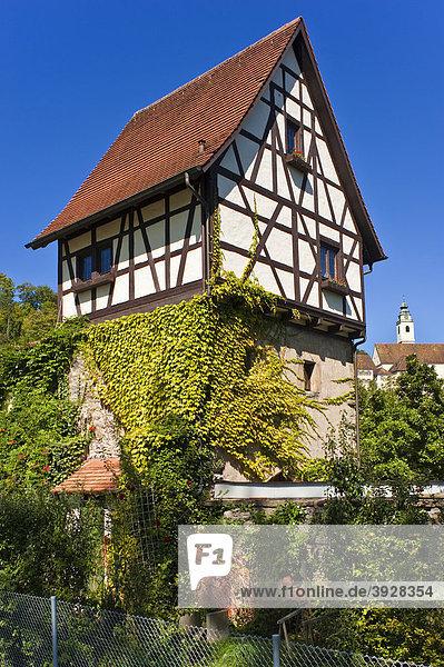Gaistor mit Stiftskirche Heilig Kreuz  Horb am Neckar  Schwarzwald  Baden-Württemberg  Deutschland  Europa