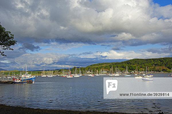 Kleiner Hafen in der Nähe von Oban  Argyll and Bute Distrikt  Highlands  Schottland  Vereinigtes Königreich  Europa