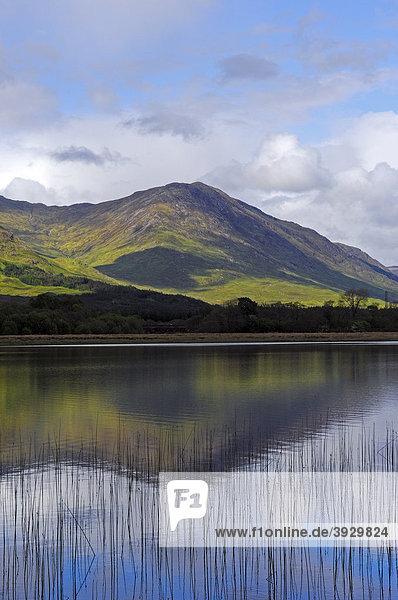 Loch Awe See  Argyll and Bute Distrikt  Highlands  Schottland  Vereinigtes Königreich  Europa