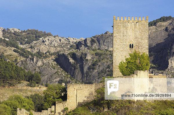 Yedra Burg im Dorf Cazorla  Sierra de Cazorla  Segura y Las Villas Naturpark  Provinz JaÈn  Andalusien  Spanien  Europa