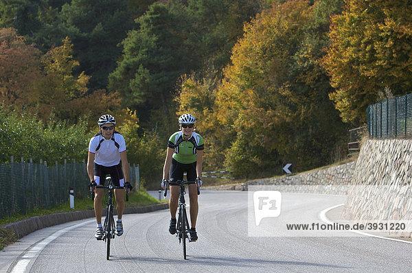 Rennrad-Fahrerin und Fahrer am Mendel-Pass oberhalb von Kaltern  Südtirol  Italien  Europa