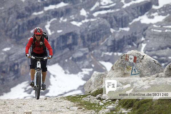 Mountain bike rider on the Limo Pass in Fanes-Sennes-Prags Nature Park  road markings on stone  Trentino  Alto Adige  Italy  Europe