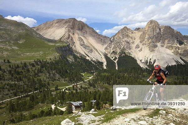 Mountain bike rider on the Limo Pass in Fanes-Sennes-Prags Nature Park with Fanes hut  Trentino  Alto Adige  Italy  Europe