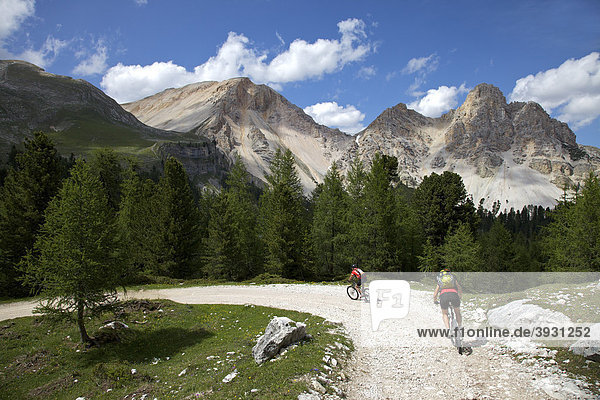 Mountain bike riders on the Limo Pass in Fanes-Sennes-Prags Nature Park  Trentino  Alto Adige  Italy  Europe