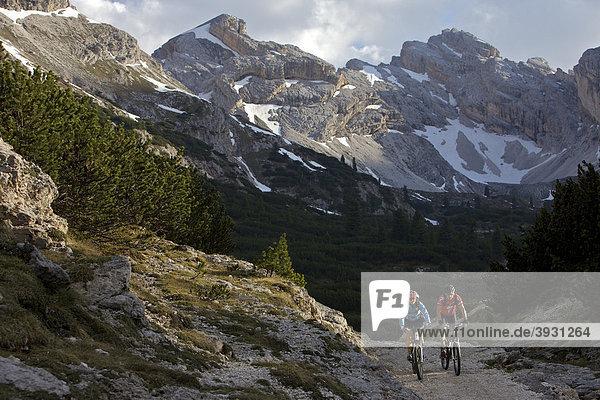 Mountain bike riders east of the Fodara Vedla basin  Parco naturale Fanes-Sennes-Braies  Veneto  South Tyrol  Italy  Europe