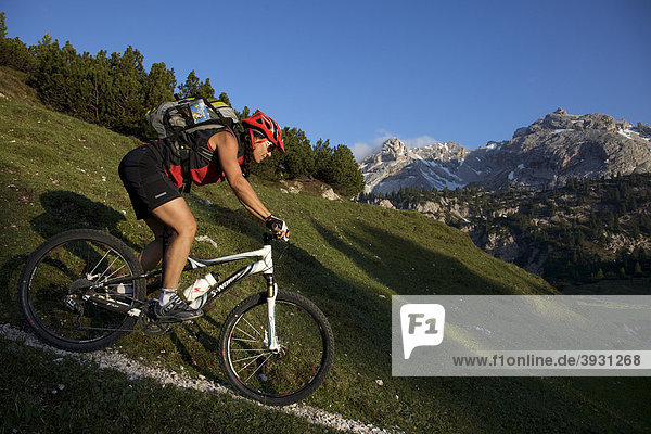Mountain bike rider  Fodara Vedla basin  Parco naturale Fanes-Sennes-Braies  Veneto  South Tyrol  Italy  Europe