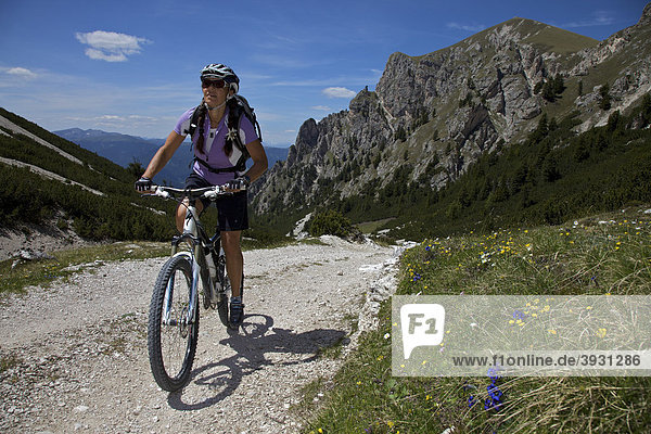 Mountain bike rider in the Naturpark Fanes-Sennes-Prags  Trentino  South Tyrol  Italy  Europe