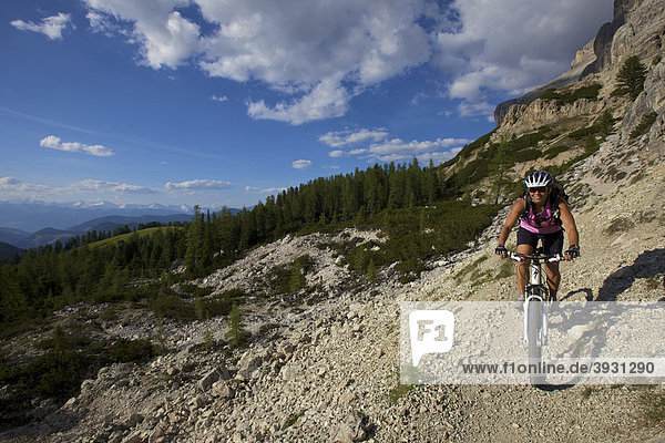 Mountain bike rider on single trail at Mt. Kreuzkofel  Naturpark Fanes-Sennes-Prags  Trentino  South Tyrol  Italy  Europe