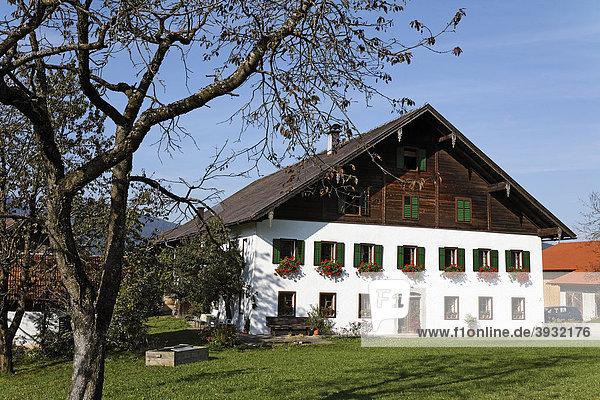 Bauerngehöft von 1860  Mondseer Land  Salzkammergut  Oberösterreich  Österreich  Europa