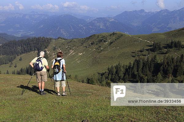 Wanderer  Pensionistenpaar blicken über Almlandschaft  Zwieselalm  Salzkammergut  Oberösterreich  Österreich  Europa