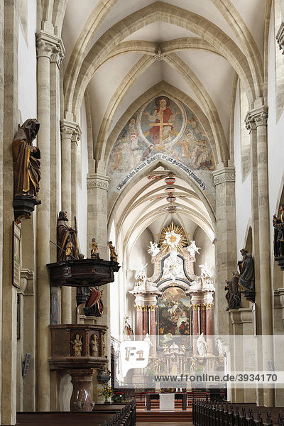 Innenansicht Dom  Wiener Neustadt  Niederösterreich  Österreich  Europa