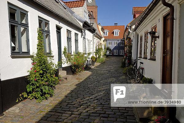 Kopfsteingepflasterter Straßenzug in der Altstadt von Aalborg  _lborg  Region Nordjylland  Dänemark  Skandinavien  Europa