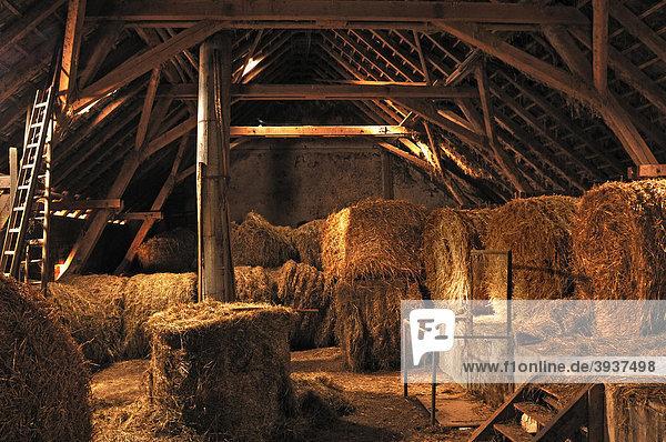 Hayloft of a Franconian small-scale farmer  Eckental  Middle Franconia  Bavaria  Germany  Europe