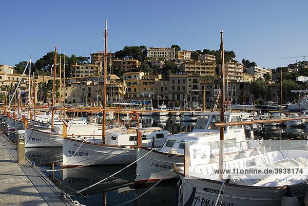 Segelboote im Hafen  dahinter die Häuser von Puerto Soller  Port de Soller  Mallorca  Balearen  Balearische Inseln  Mittelmeer  Spanien  Europa
