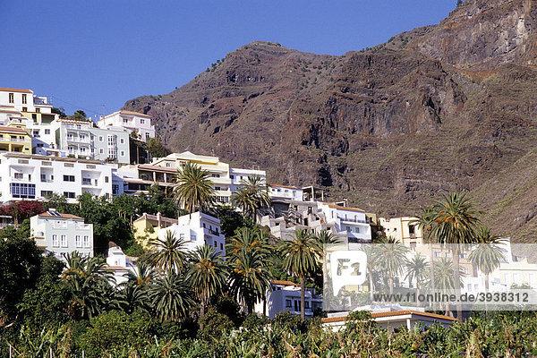 Häuser und Palmen  Berghang beim Dorf La Calera  Valle Gran Rey  La Gomera  Kanarische Inseln  Spanien  Europa