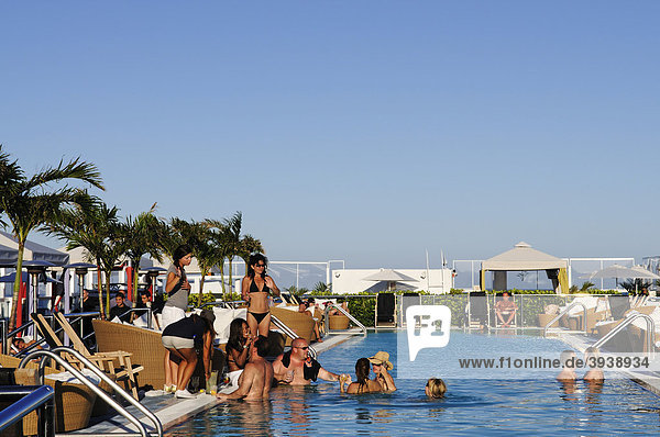 Rooftop Pool  Gansevoort South Hotel  Miami  Florida  USA