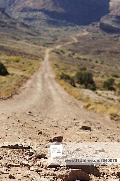 White Rim Trail  Moab  Utah  USA