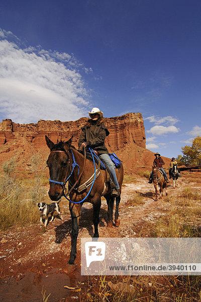 Cowgirl  Reiter bei Torrey  Capitol Reef Nationalpark  Utah  USA