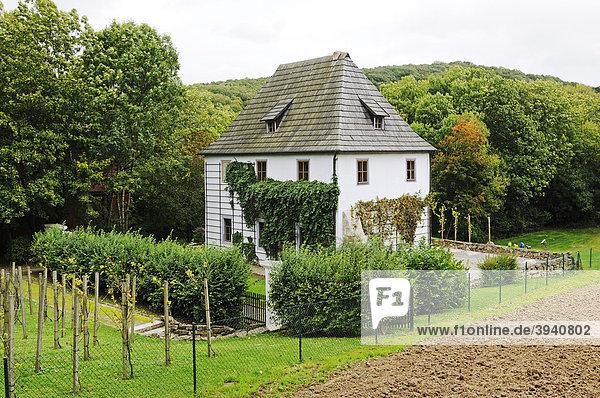 Originalgetreue Kopie vom historischen Gartenhaus von Johann Wolfgang von Goethe in Bad Sulza  Thüringen  Deutschland  Europa
