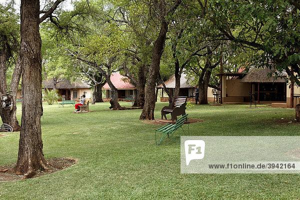 Lower Sabie Restcamp  Kruger Nationalpark  Südafrika  Afrika