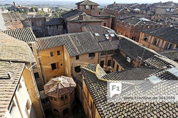 Blick auf die Dächer von Siena  Toskana  Italien  Europa