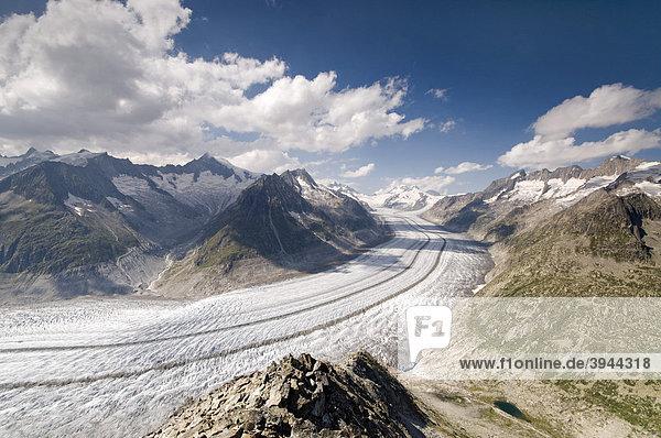 Aletschgletscher  dahinter Aletschhorn  Jungfrau  Mönch  Eiger und Großes Wannenhorn  Berner Hochalpen  Wallis  Schweiz  Europa