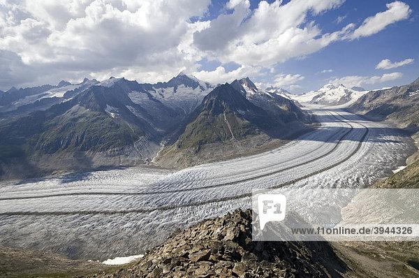 Aletschgletscher  dahinter Schinhorn  Gr. Fusshorn  Geißhorn  Aletschhorn  Jungfrau  Mönch und Eiger  Berner Hochalpen  Wallis  Schweiz  Europa