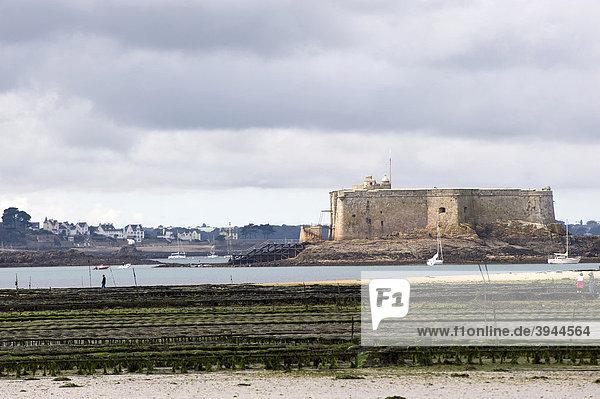 Austernbänke und das Ch'teau du Taureau in der Bucht von Morlaix  Finistere  Bretagne  Frankreich  Europa