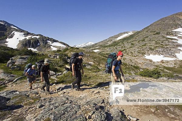 Gruppe junger Wanderer beim wandern  Rucksacktourismus  historischer Chilkoot Pass  Chilkoot Trail Wanderweg nahe des Happy Camp  alpine Tundra  Yukon Territory  British Columbia  BC  Kanada
