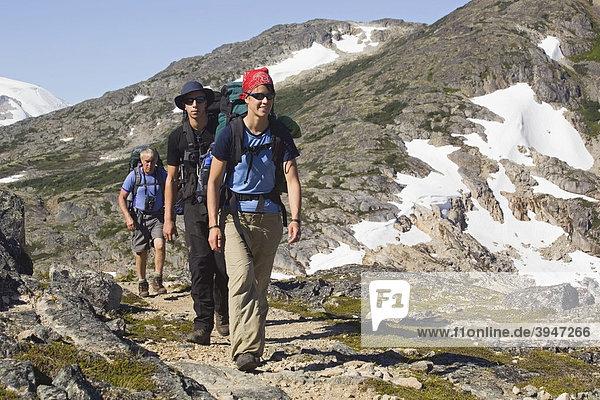 Gruppe junger Wanderer  Wandern  Rucksacktouristen  historischer Chilkoot Pass  Chilkoot Trail Wanderweg nahe des Happy Camps  alpine Tundra  Yukon Territory  British Columbia  BC  Kanada