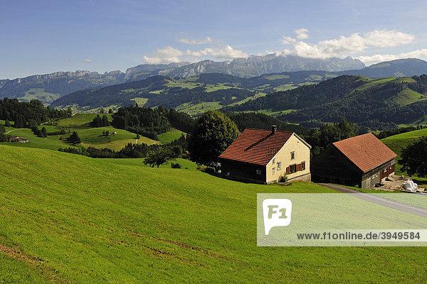 Typische Hügellandschaft im Kanton Appenzell mit Bauernhäusern  hinten das Alpsteingebirge  Kanton Appenzell  Schweiz  Europa