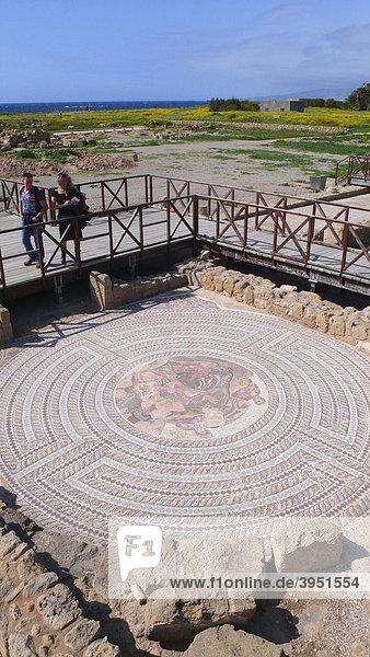 Mosaik  Ruinen von Kato Pafos  Zypern  Griechenland  Europa