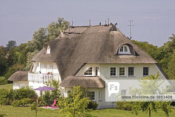 Reetgedecktes Ferienhaus im Ostseebad Ahrenshoop auf dem Darß  Mecklenburg-Vorpommern  Deutschland  Europa Ferienhaus